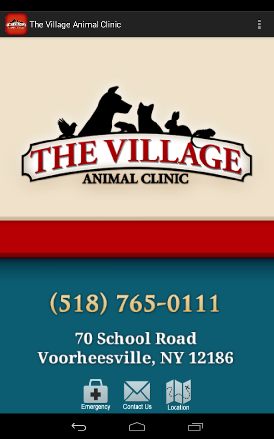 The Village Animal Clinic- screenshot