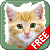 Pet Animals Scratch Game Free
