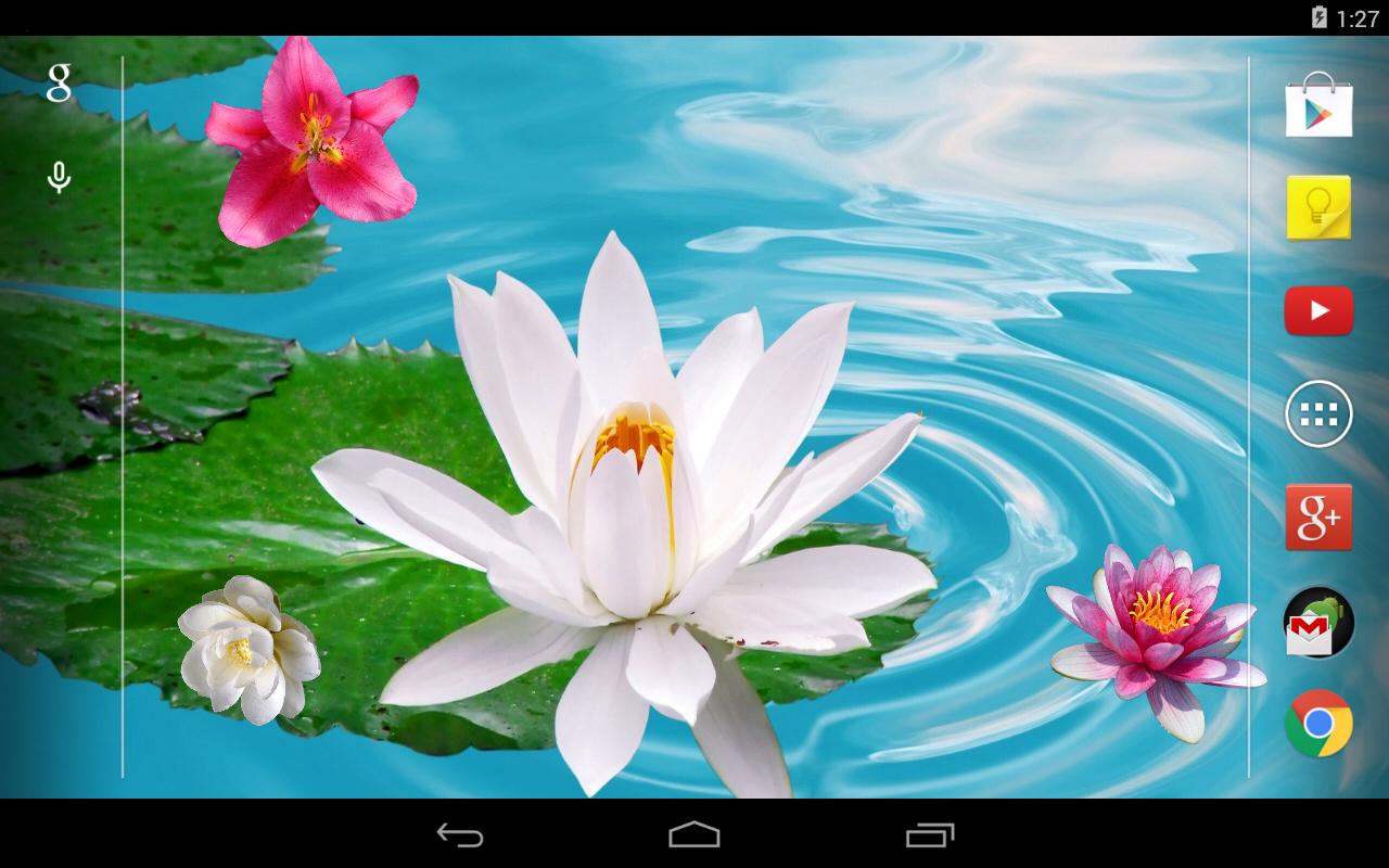 Lirio de agua fondos animados aplicaciones de android en for Fondos animados de agua