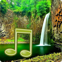 Jungle Sounds - Nature Sounds icon