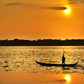 Fisherman in Kerala by Konstanze Singenberger - Landscapes Sunsets & Sunrises ( sunset, kerala fisherman )