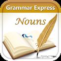 Grammar Express : Nouns Lite icon