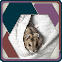 HexSaw - Pocket Pets icon