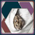 HexSaw - Pocket Pets icon