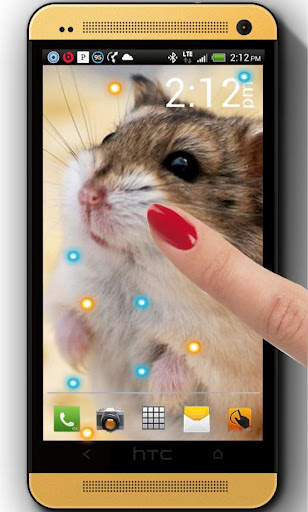 Hamsters Funny live wallpaper