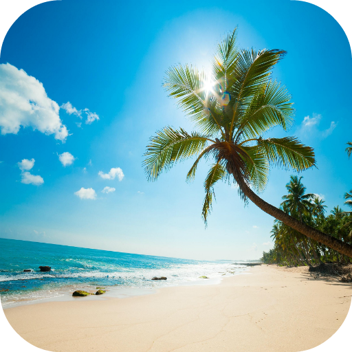 Beach Video Wallpaper 個人化 App LOGO-硬是要APP