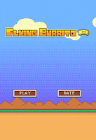 Screenshot of Flying Burrito