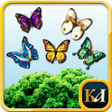 Match 3 Butterfly icon