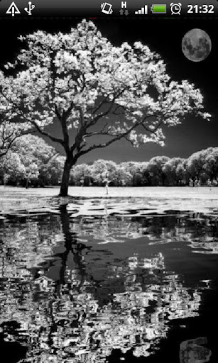 Reflective Black And White LWP