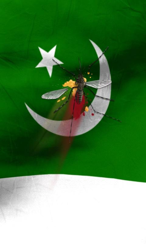 Pakistan Flag Waving Wallpaper Pakistan Flag Live Wallpaper