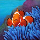 Cogiloo Aquarium