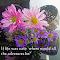 a2015-02-10 14.03.48_crTY.jpg
