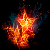 Flower Fire Live Wallpaper 3D