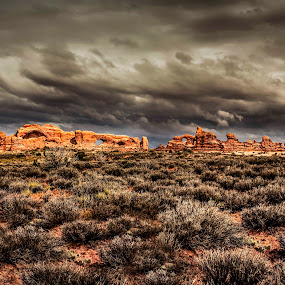 Storm's Brewing by Luke Popwell - Landscapes Deserts ( desert, america, trip across country, driving, plants, states, plant life, travel, scenic, united states of america, amazing, adventure, nature, awesome, views, formations, scenery, rocks )
