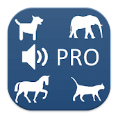 Animal Sounds + Game PRO