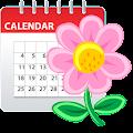 Woman diary (calendar) download
