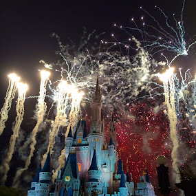 Disney's Magic Comes Alive by John Kincaid - Instagram & Mobile iPhone
