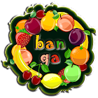 Fruits Flash Cards icon