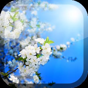 春天動態桌布 個人化 App LOGO-硬是要APP
