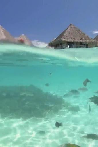 Underwater video Galaxy S6 LWP