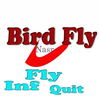 Bird fly game