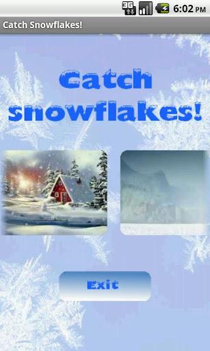 Catch Snowflakes