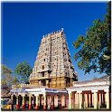 The Great History of Tamil