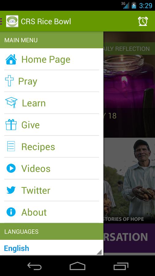 CRS Rice Bowl - screenshot