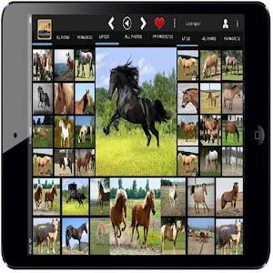 馬和小馬壁紙高清 娛樂 App LOGO-硬是要APP