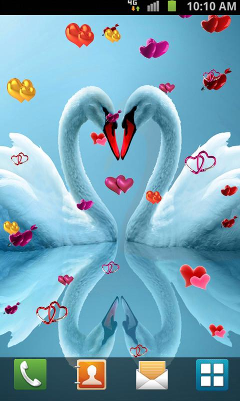 Love birds live wallpaper android apps on google play love birds live wallpaper screenshot voltagebd Images
