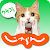 Jalan Japan Tourist Guide file APK Free for PC, smart TV Download