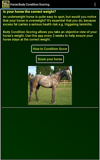 【免費運動App】Horse Body Condition Scoring-APP點子