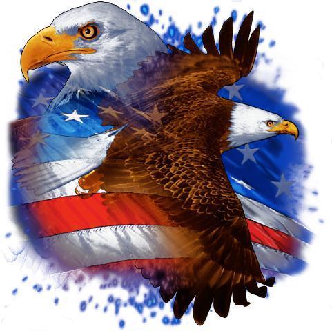 Proud American Pride Wallpaper