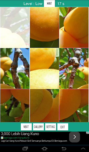 Fruits Vegetables Puzzle