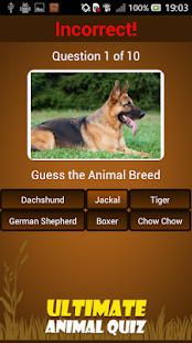 Ultimate Animal Quiz - screenshot thumbnail