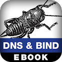 DNS and BIND on IPv6 logo