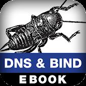 DNS and BIND on IPv6