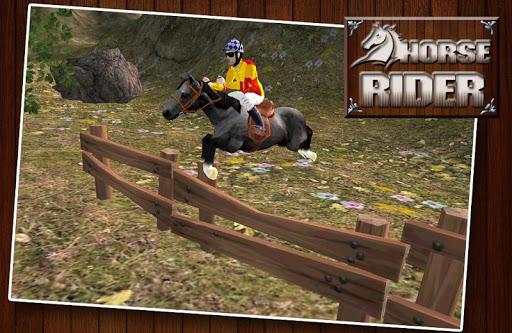 马骑手跳跃