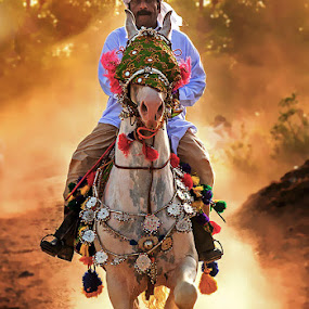 Rider by Abdul Rehman - People Street & Candids ( mela, pakistan, multan, rural life of pakistan, rural life, horse rider,  )