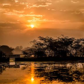 Sunrise by Sarthak Bisaria - Landscapes Sunsets & Sunrises ( clouds, waterscape, silhouette, trees, sunrise, pond, sun, golden hour,  )