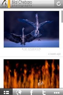 Bilal Chebaro Photography - náhled