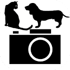 Dog&cat camera icon