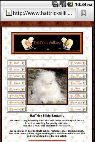 HatTrick Silkies- screenshot