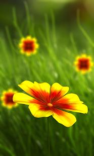 360 Flower live wallpaper 3D - náhled