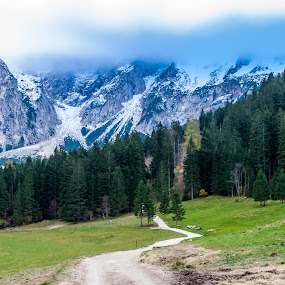 Jezersko by Sabina Kos - Landscapes Mountains & Hills ( , path, nature, landscape, renewal, green, trees, forests, natural, scenic, relaxing, meditation, the mood factory, mood, emotions, jade, revive, inspirational, earthly, relax, tranquil, tranquility )