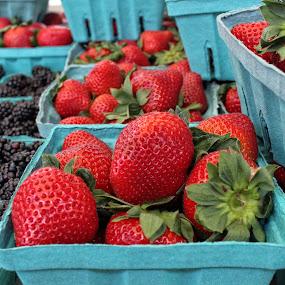 Fresh Strawberries by Maureen Rueffer - Food & Drink Fruits & Vegetables (  )