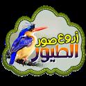 خلفيات الطيور logo