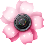 Lovely Sakura Picture Frames Apk
