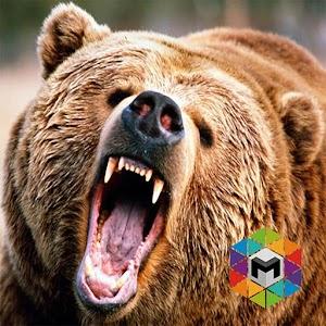 Bear Simulator for PC and MAC