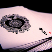 Magic & Card Tricks